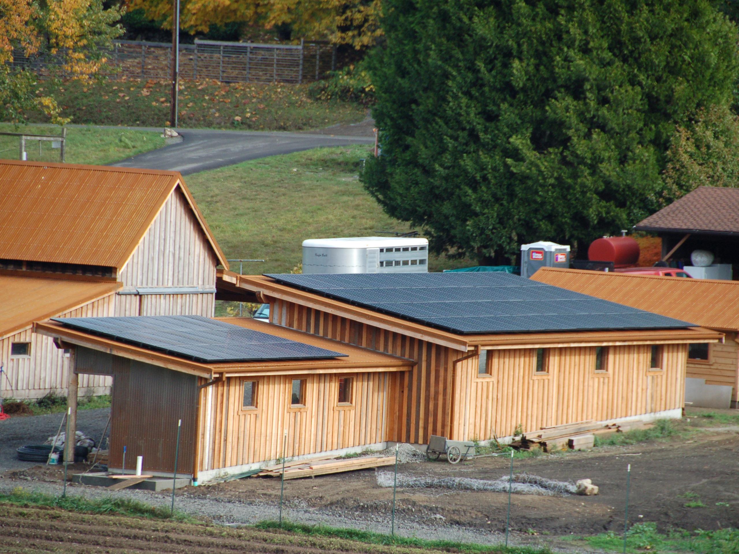 Winnie Farm